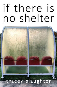 Tracey Slaughter's 'if there is no shelter'